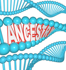Ancestry Word in DNA Research Your Genealogy Ancestors