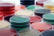 Petri plates collection