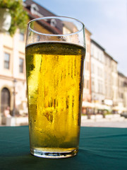pint of light  beer