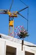 Dachgleiche bei Baustelle eines Hauses
