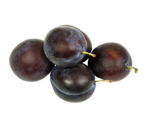 fresh juicy organic plums from the garden