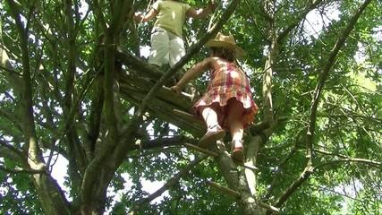 Enfant montant dans une cabane dans un arbre