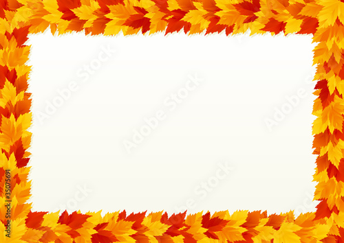 Vector background  with frame of Autumn maple leaves.