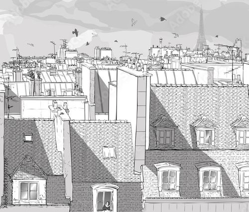 France - Paris roofs