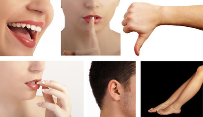 Collage set of face and body parts of men and women isolated