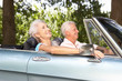 Senior couple in sports car