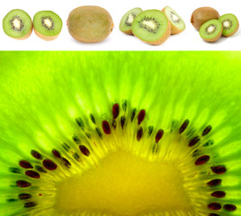 Kiwi Fruit Set Isolated on White Background