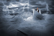 Businessman sailing in stormy papers sea