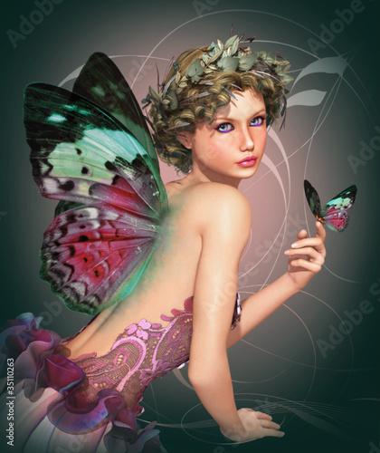 poznaj-butterfly