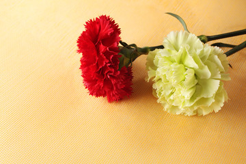 Red and Green Carnations