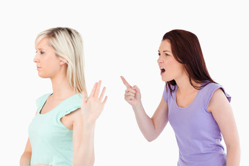 Gorgeous woman ignoring a yelling lady