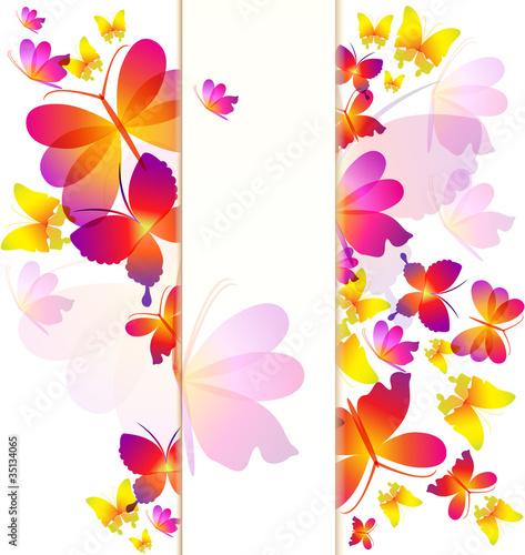 Fototapeta Colorful butterflies background