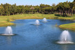 Fountain in the artificial pond.