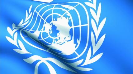 United Nations Day flag white background