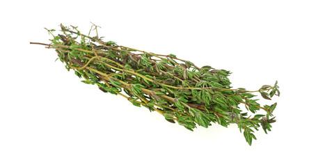 Fresh Thyme Herbs at an Angle