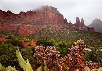 Madonna and Nuns Red Rock Canyon Rain Clouds Sedona Arizona