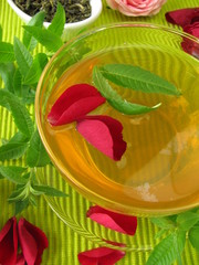 Grüner Tee mit Rosenblüten und Zitronenverbene