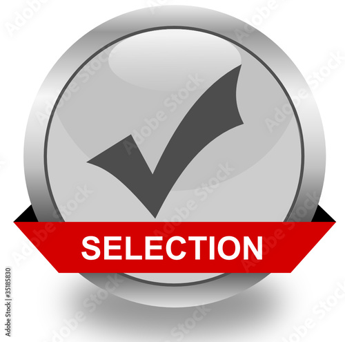 Selection icon