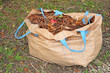 Sack Of Dry Leaves In The Garden