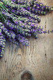 Fresh lavender - 35189679