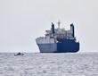 Italy, Sicily, Mediterranean sea, Cargo ship