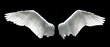canvas print picture - Angel wings isolated on the black background