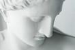 White statue of Venus - 35208670