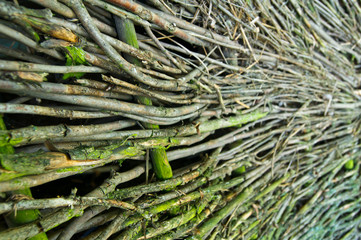 wall of sticks