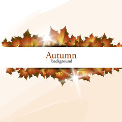 New autumn banner. Vector illustration.