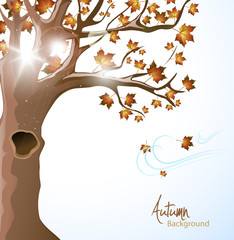 Beautiful autumn background.Vector illustration.