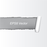 Ripped Vector Paper - Eps 8