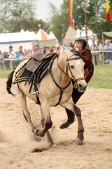 Voltige cheval