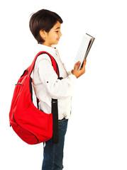 Cute schoolboy reading book