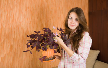 woman with oxalis  in  pot