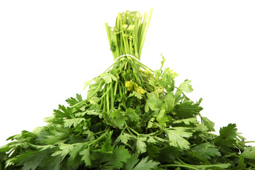 Green leaves of parsley