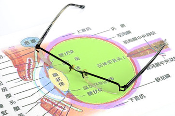 Eyeglasses and eye structure
