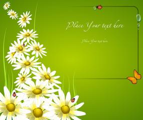 floral frame card background