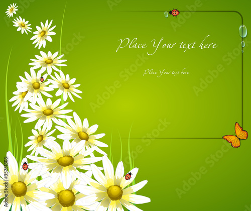 floral frame card background