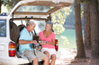 Senior couple on country picnic - 35255055