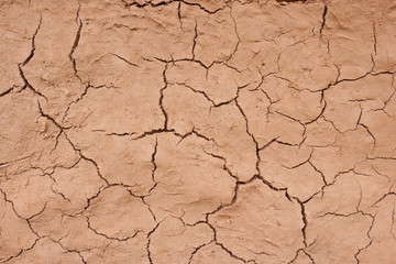 trockener BodenTrockenheit © Matthias Buehner
