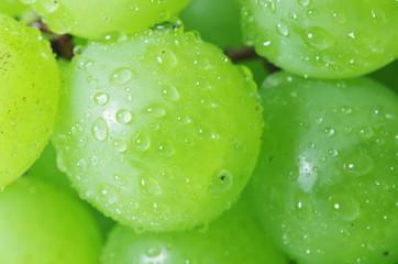 葡萄の粒のクローズアップ
