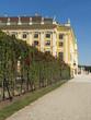 Schönbrunn mit Rosenlaube