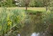 Cronesteyn Park in Summer