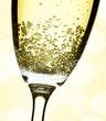 champage close-up