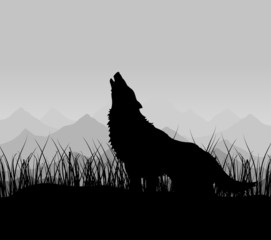 The wolf howls in mountains in a fog. A vector illustration