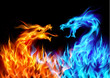 Blue and red fire Dragons - 35290076