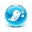 icône oiseau information / bird icon