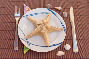 Starfish for the lunch