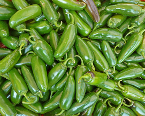 green peppers for sale at local farmer's market