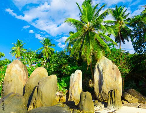 Paradise Ocean Season
